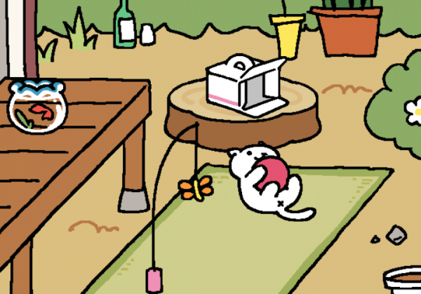 white cat playing with red ball