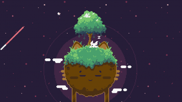 cat bird sleeping tree world